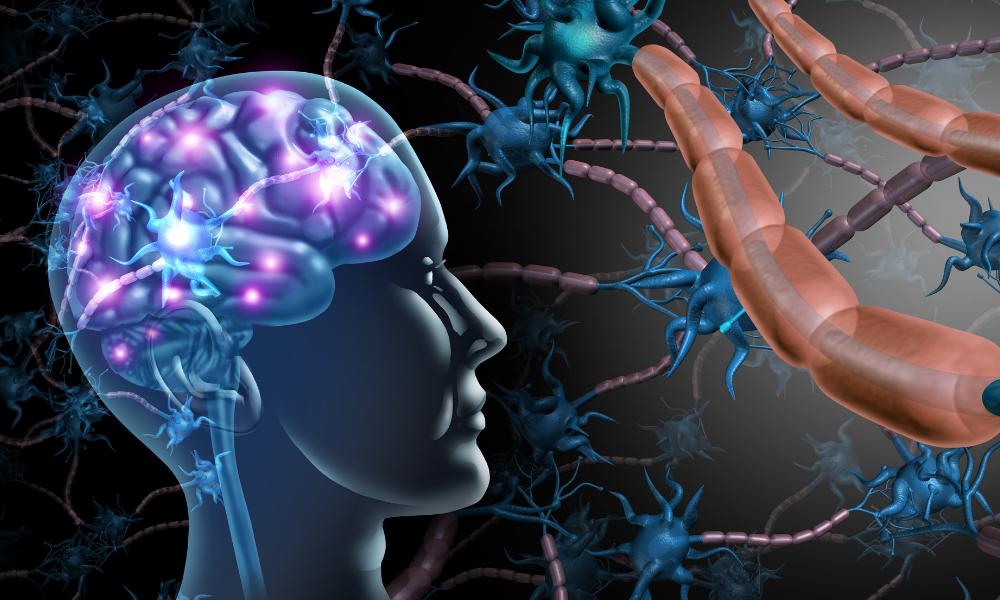 Die messbare Verbindung zwischen Körper und Geist: Neurotransmitter