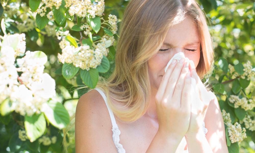 Allergien und Heuschnupfen ganzheitlich betrachtet   Was du selbst dagegen tun kannst   Teil 1 #228